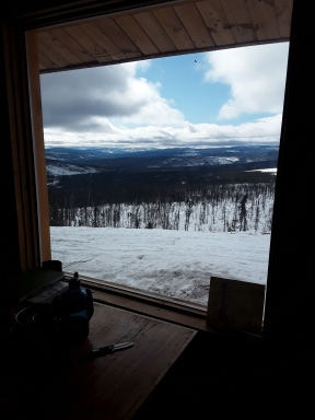From the kitchen window at Moose Creek Cabin